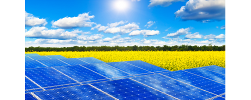 Τα ηλιακά πάνελ αυξάνουν τη διαθέσιμη τροφή σε βοσκοτόπους έως 90%
