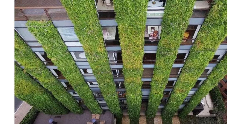 Στη Θεσσαλονίκη ο πρώτος κάθετος κήπος σε δημόσιο κτίριο στην Ελλάδα