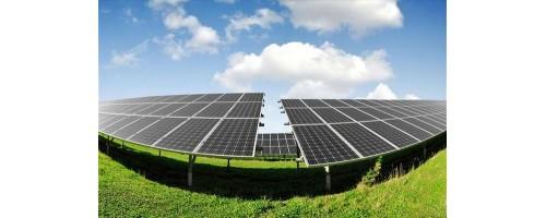 Ιαπωνία: Νέες ηλιακές φάρμες μανιταριών που παράγουν ανανεώσιμη ενέργεια και τρόφιμα
